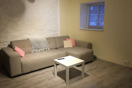 Very good location, newly renovated city apartment - 塔林