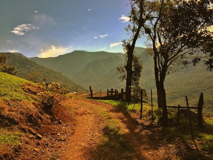 Sítio do Javai - O Caminho dos Conventos na Serra