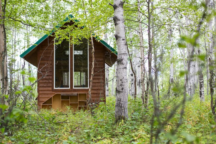 Cozy Forest Retreat