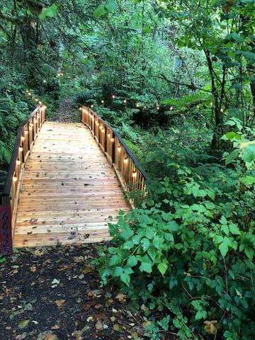 Foot bridge over Hackett Creek