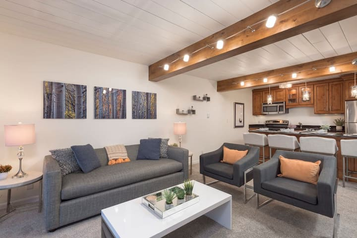 Updated 2BR in the Heart of Aspen