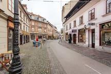 Gratitude & Harmony Wellstay in old Ljubljana*