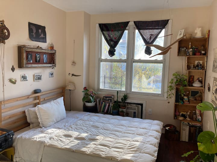 Wake up with the birds in BK in a serene bedroom
