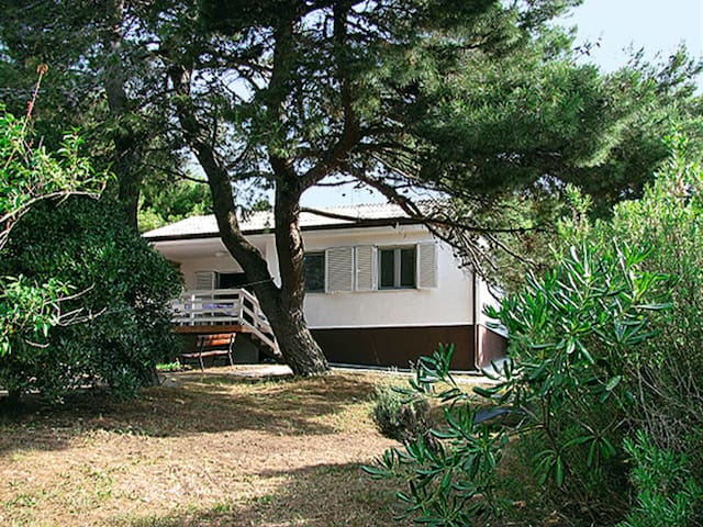 Holiday House Gerencer for 6 persons in Premantura