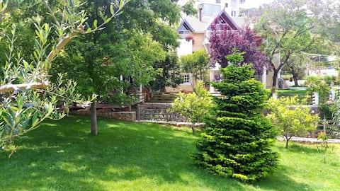 Casamino: privat hus , haver og privat pool