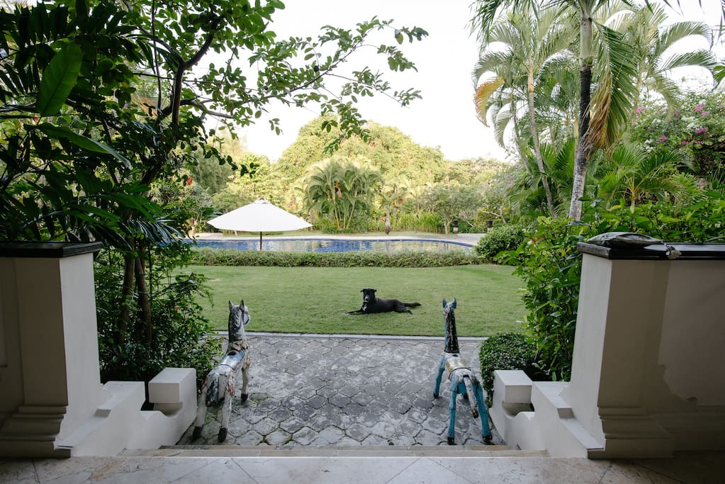 Outlook to pool and garden