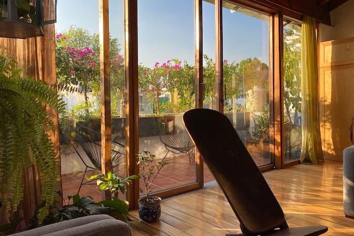Peaceful, sunny home in Coyoacán.