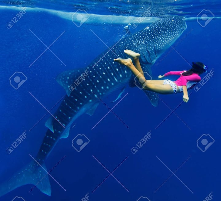 Hulhumale Adventures tour