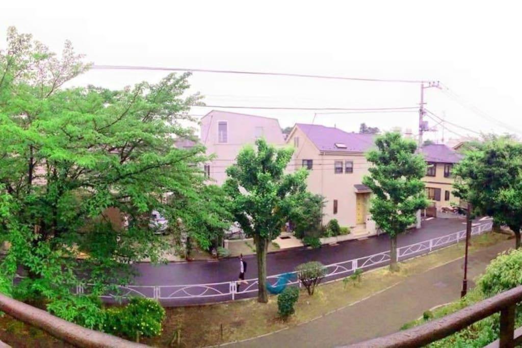 View from the Balcony of the Living (Shared room) -Sakura Tree-