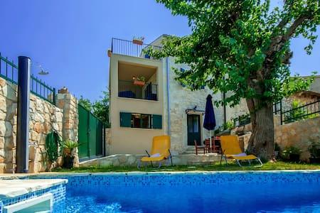 Villa Monspinosa mit Pool - Poreč - Hus