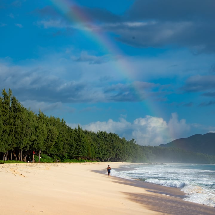 Walk The Beach, Alone