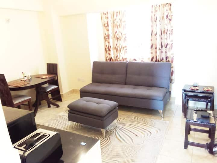 Remmy' s Spacious one bedroom apartment,ngong road