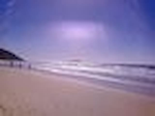 Flat praia dos ingleses frente ao mar