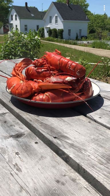 Buy fresh lobster at the nearby fisherman's co-op. Cooking utensils provided.
