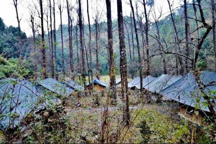 Ayar Jungle Camps - Luxury Tents amidst the Jungle