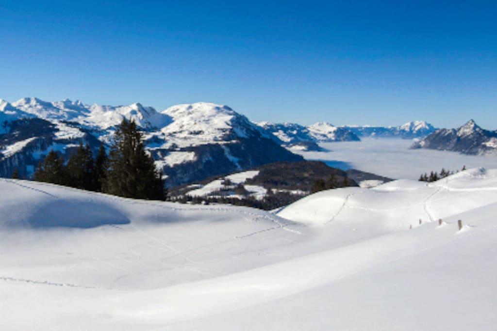 Wunderschöne Winterregion / Beautiful winter region