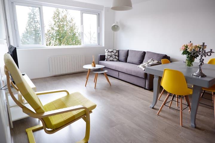 Appartement lumineux à Oyonnax