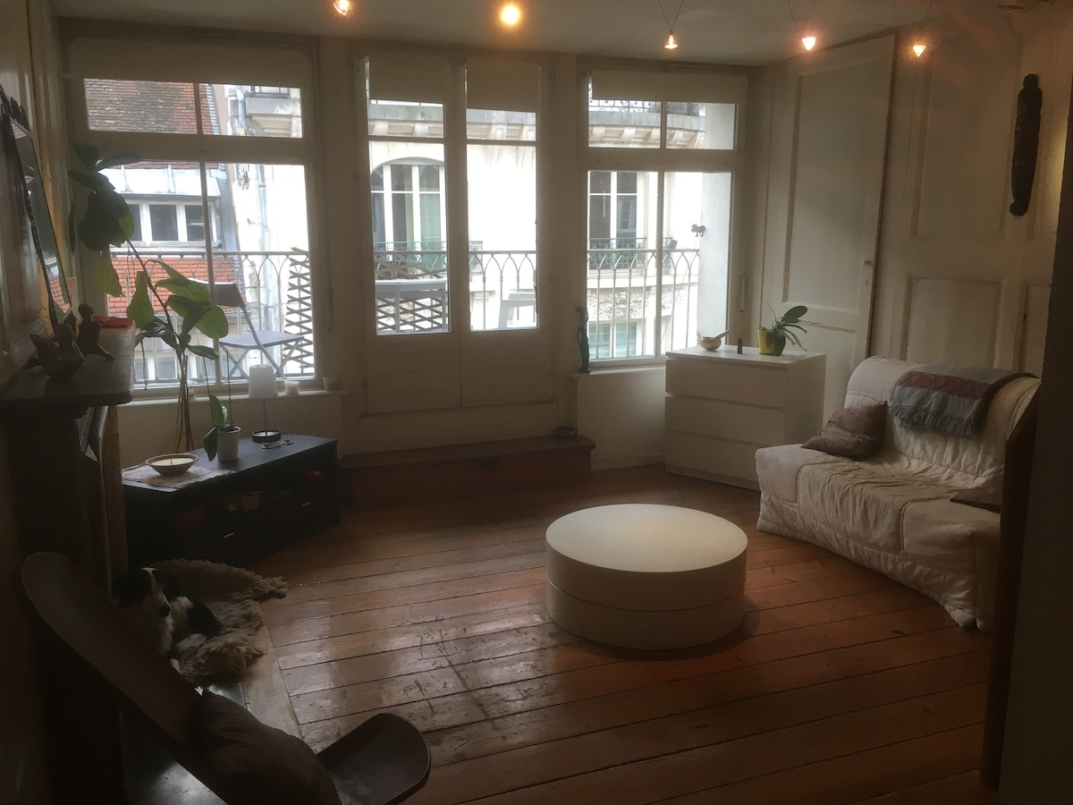 Chambre+SDB Privée Centre Ville Historique   Apartments For Rent In Besançon,  Bourgogne Franche Comté, France