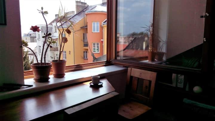 Podkrovní byt v klidné části města