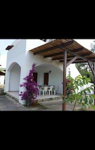 Maria's house 2