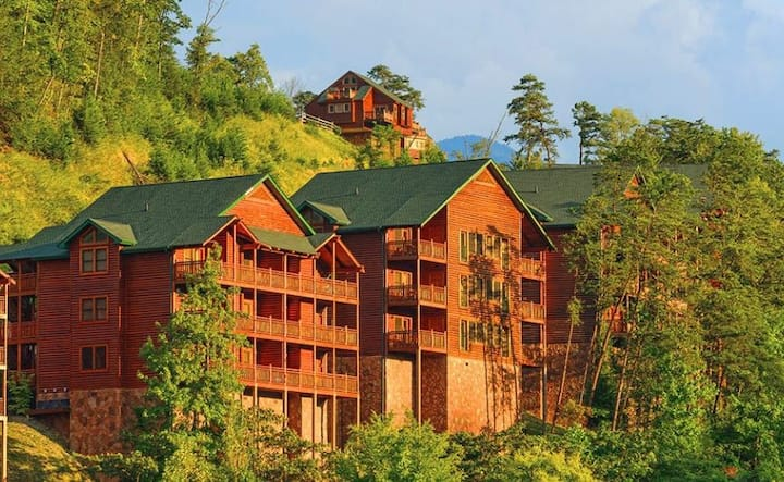 Beautiful One Bedroom Condo in the Mountains !