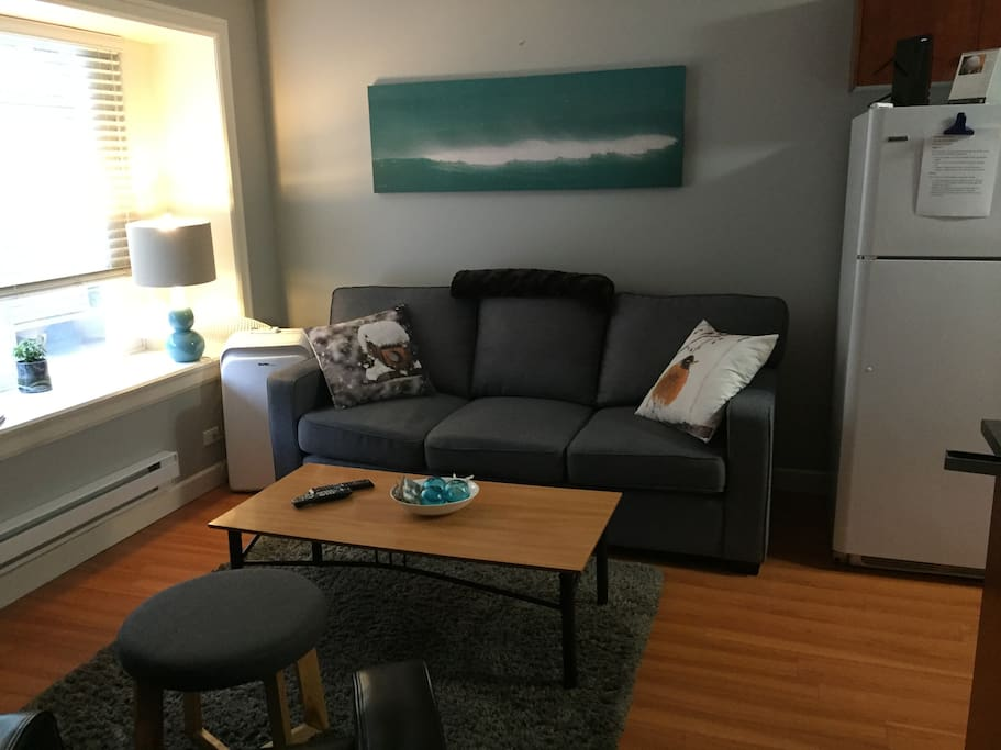 Living Room w/t Fold out couch & Air Conditioning