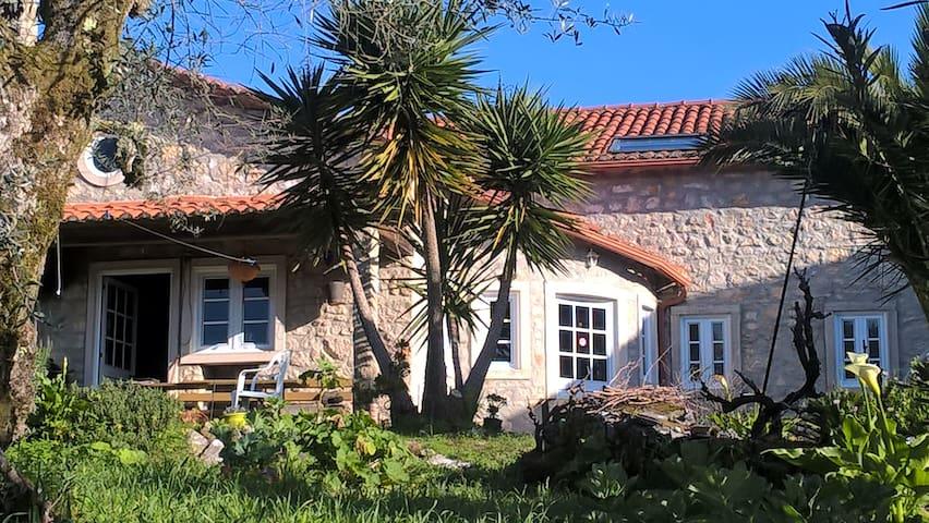 Natursteinhaus in ruhiger Lage - Dom