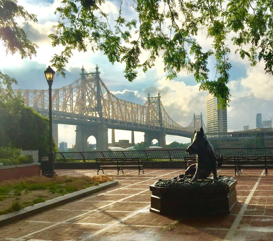We are half a block away from Sutton place park located on E57th/ Sutton Place. This view is alongside the beautiful 59th Street bridge & The East River.