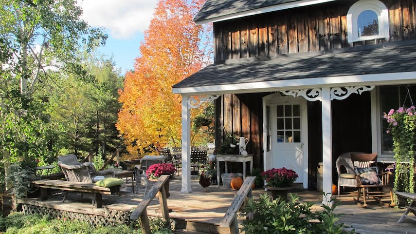 Violet Hill Farm-  Rustic Elegance