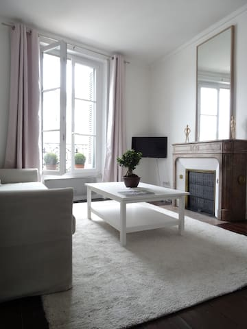 Cosy classical flat in front of the Royal Castle - Blois - Leilighet