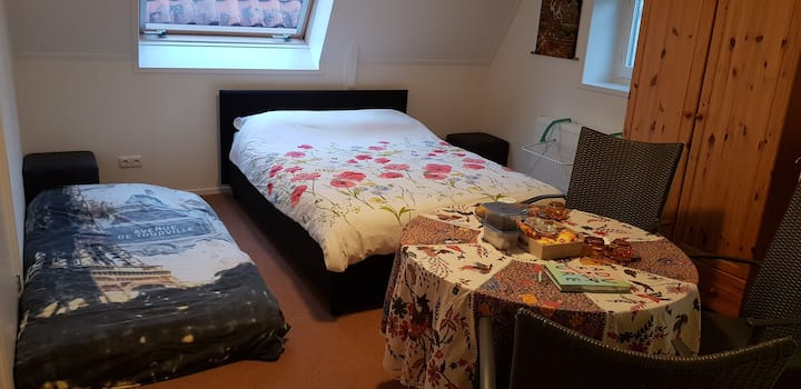 1-3/4p room in center of Steenwijk