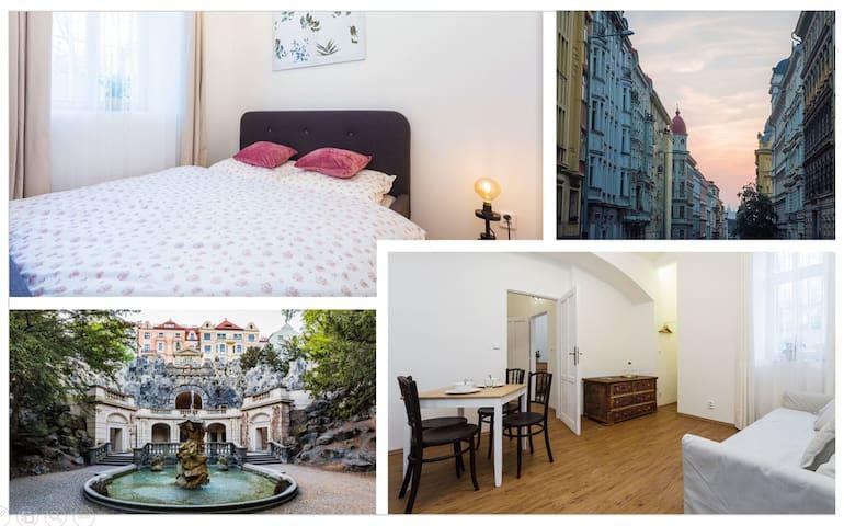 Comodous apartment in the classy Vinohrady quarter