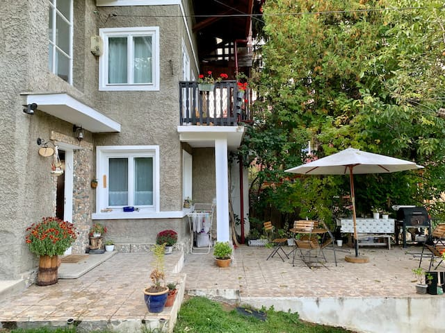 Bran and Breakfast - Double room Facing Bucegi