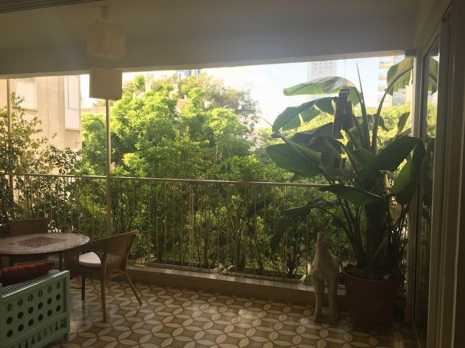 Living Room & Balcony View
