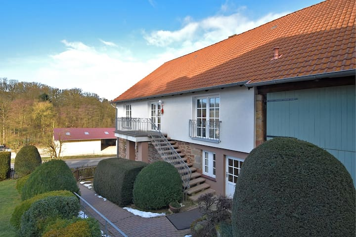 Spacious and stylish ground floor apartment in Hesse with wood stove