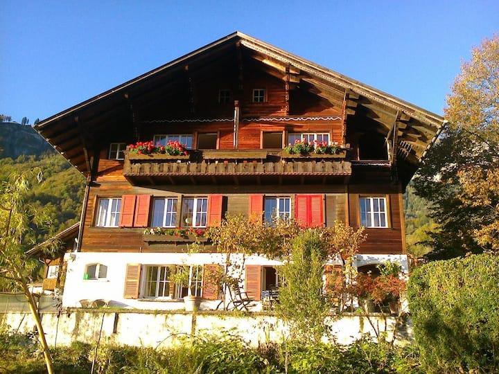 Nahe Interlaken, traumhafte Lage, Seesicht