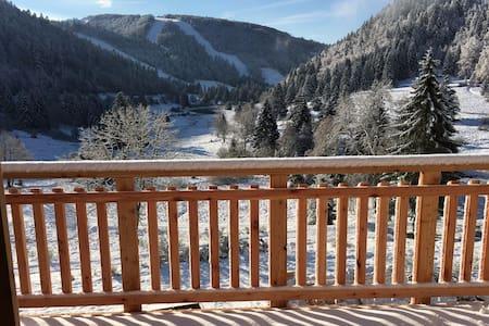 Appartement vue panoramique au pied des pistes - La Bresse