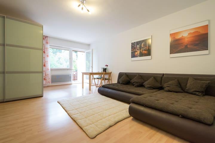 Studio in Seeheim-Jugenheim - Seeheim-Jugenheim - Apartment