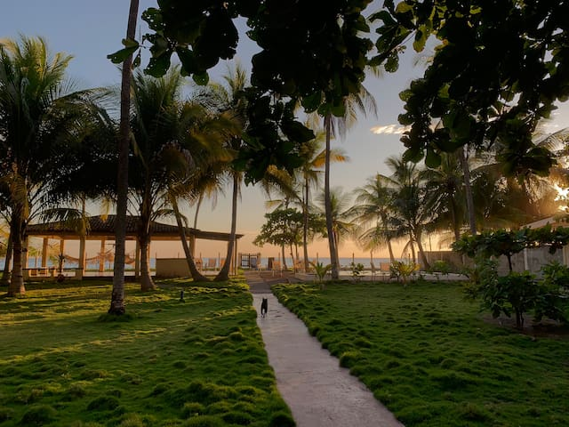 Beachfront house with big garden