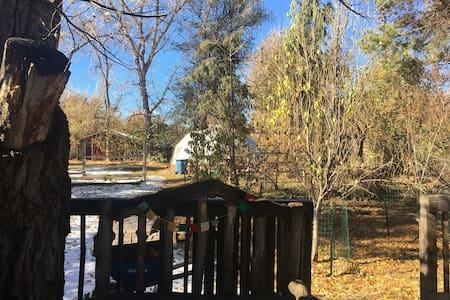 Adorable 420 friendly Farmhouse - Lakewood