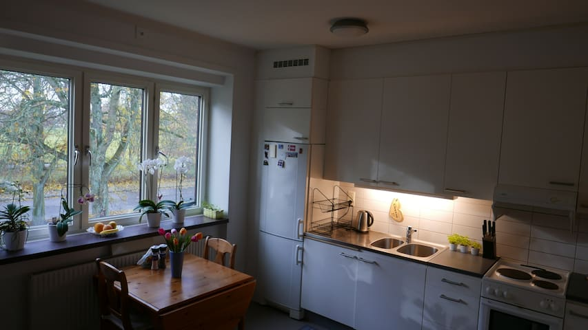 Charming two room apartment in Malmö by the park