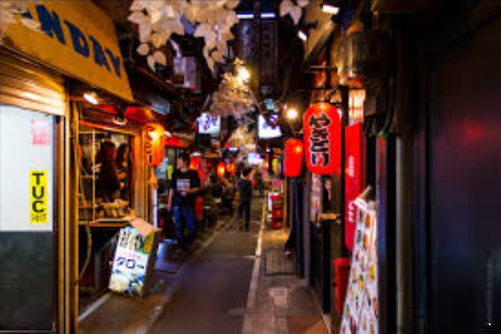 Close to the bright lights of shinjuku, this is shinjuku food alley, again, 15 minute walk from the apartment or 4 minute walk and 4 minutes on the subway.