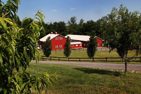 Deluxe Apt w prvt entry on working farm - Brandywine - Apartment
