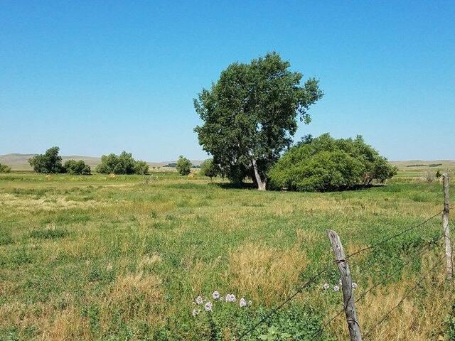 Solar Sandhills Camping Site#2