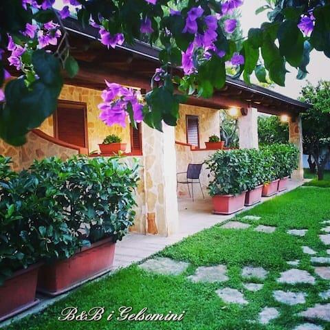 B&B i Gelsomini - Marina di Ginosa - Tripla