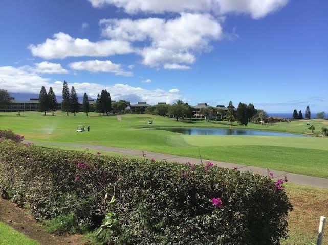 Waikoloa Fairways A101, Ocean & Golf Views