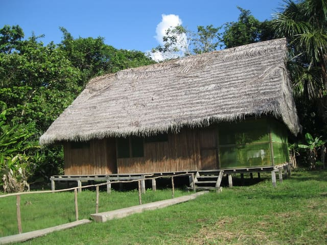Iquitos. Comunidad 20 de enero.