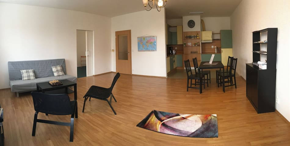 Spacious apartment - 16 minutes from city center