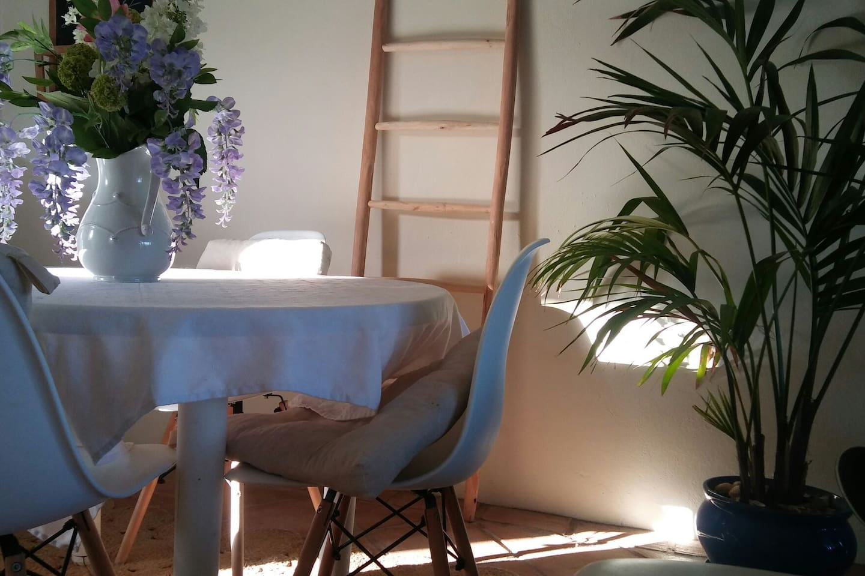 salon con luz natural