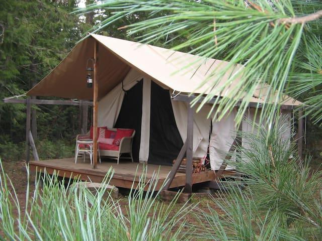 Huckleberry Tent & Breakfast -Cedar - Clark Fork